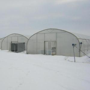 Строительство фермерских пленочных  теплиц