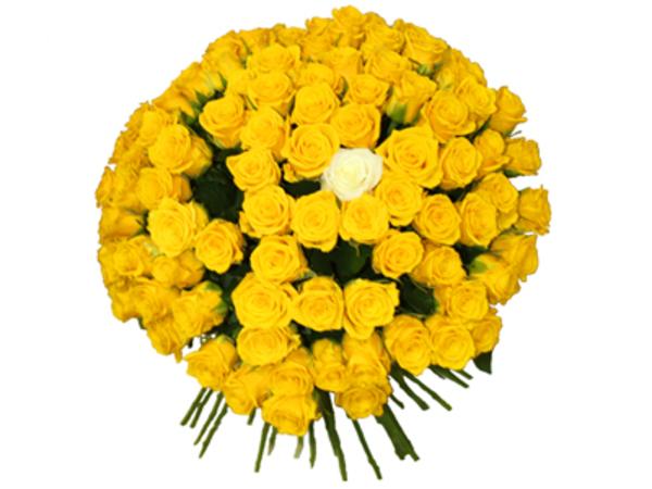 букеты из живых цветов и живых комнатных цветов 2